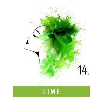 toner do włosów FUNKY COLOR - LIME [14]