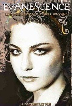 EVANESCENCE: FROM A LITTLE ROCK TO A GREAT BIG SOUND (DVD)