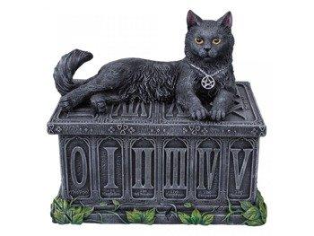 szkatułka FORTUNES WATCHER TAROT