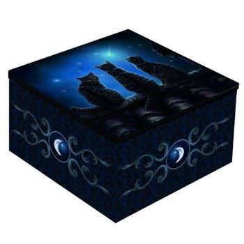 szkatułka WISH UPON A STAR
