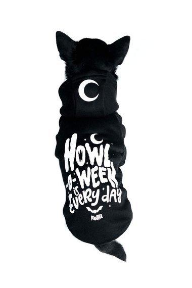 bluza dla psa KILLSTAR - HOWL