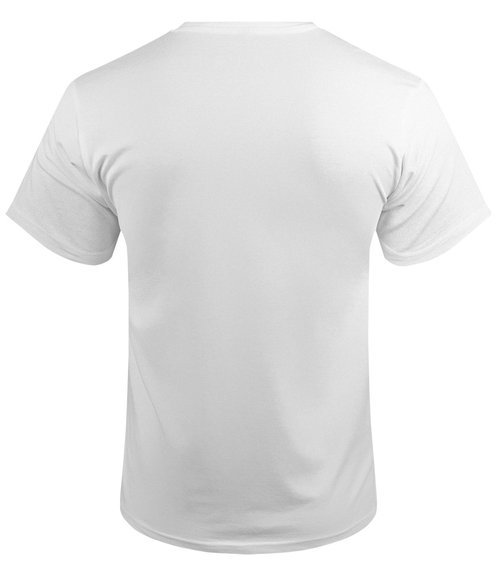 koszulka PINK FLOYD - DISTANT BELLS